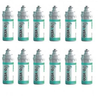 12 Cartucce filtro Oceano OK16S00 BAYO S CarbonBlock Sinter. Ag 0,5 μm originale Waterline in vendita su Evabuna.it