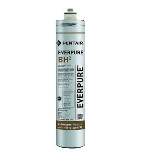 Filtro a cartuccia EVERPURE BH2 EV9612-50 originale EVERPURE in vendita su Evabuna.it
